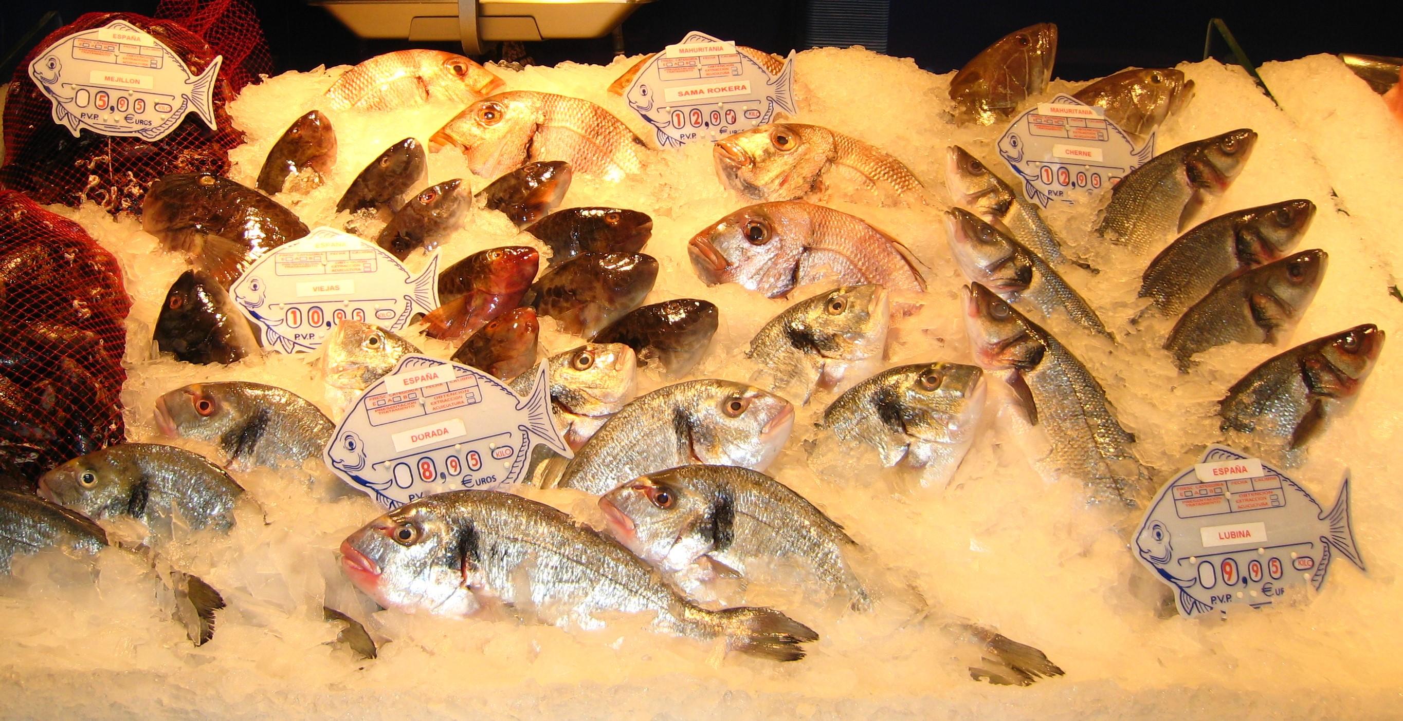 Mer fisk til folket!