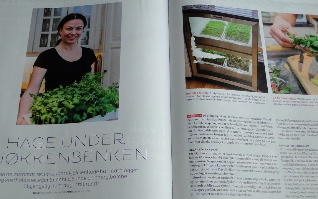 Urban Cultivator – grønn glede!